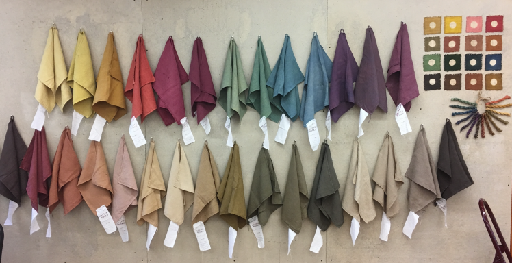 Image of Natural Dye Colors
